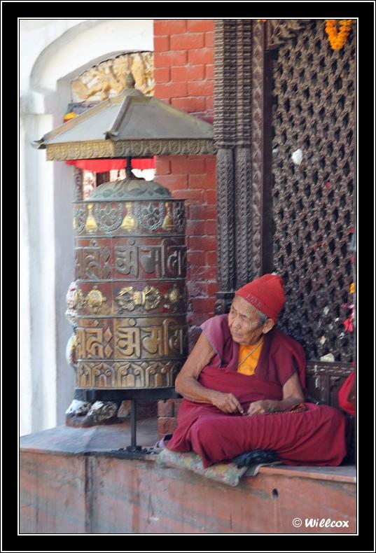 Népal - Novembre 2010 Yd0_9534