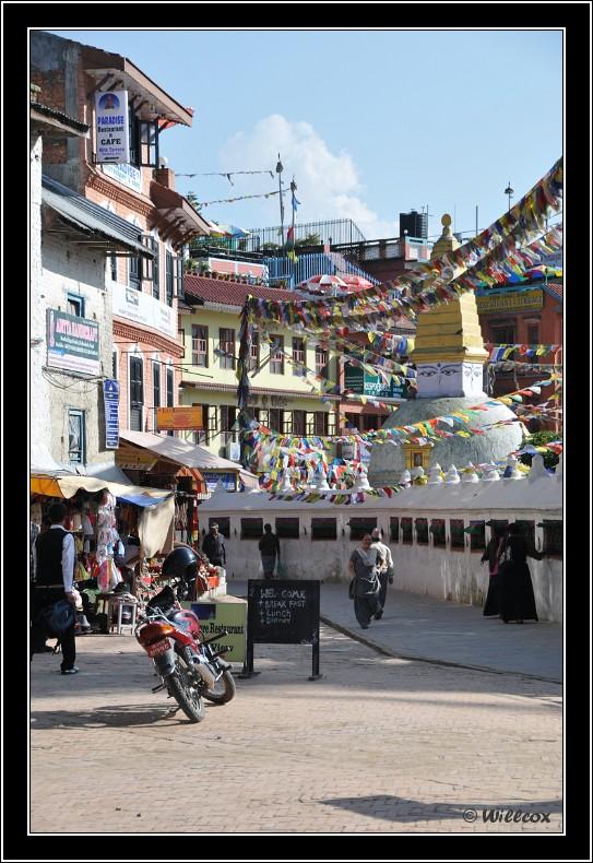 Népal - Novembre 2010 Yd0_9535