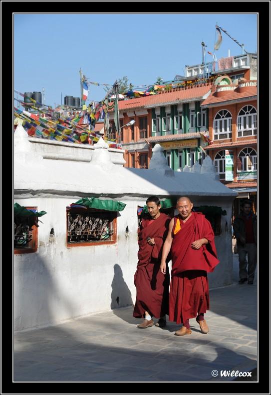 Népal - Novembre 2010 Yd0_9537