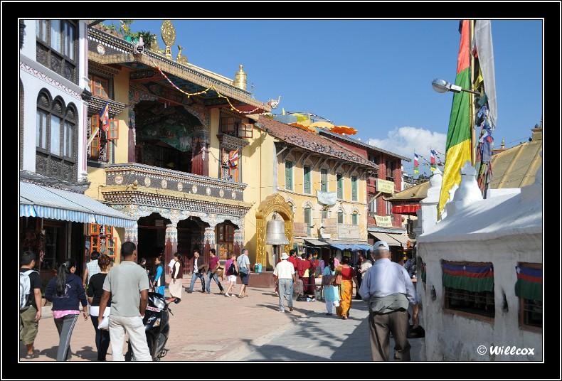 Népal - Novembre 2010 Yd0_9538