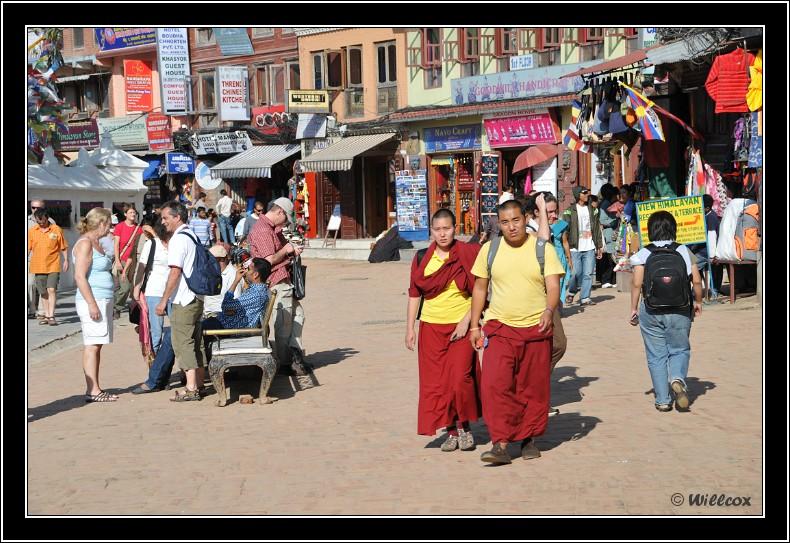 Népal - Novembre 2010 Yd0_9539