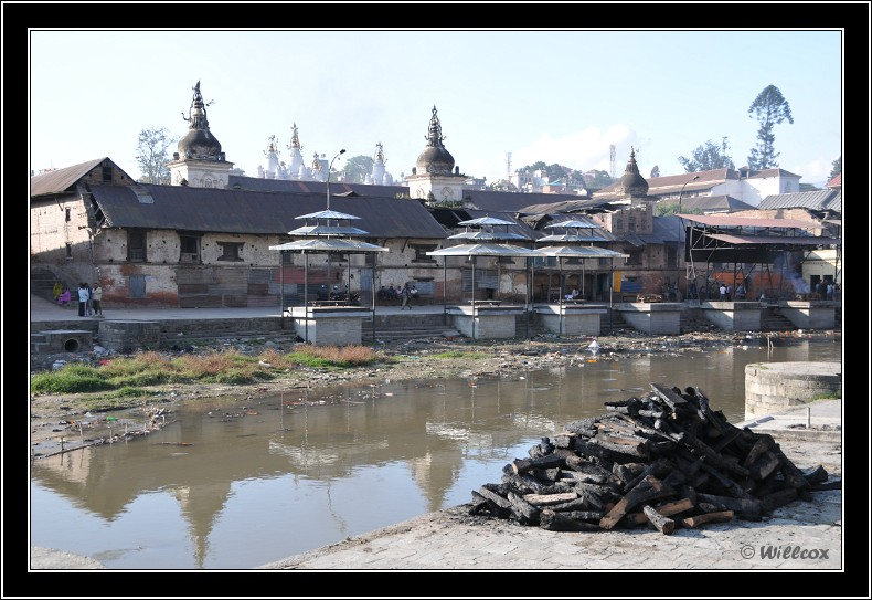 Népal - Novembre 2010 Yd0_9544