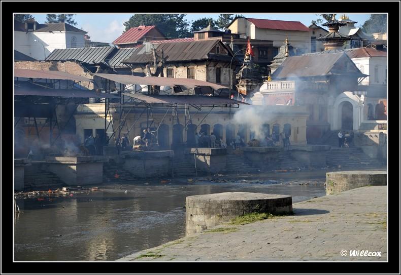 Népal - Novembre 2010 Yd0_9548