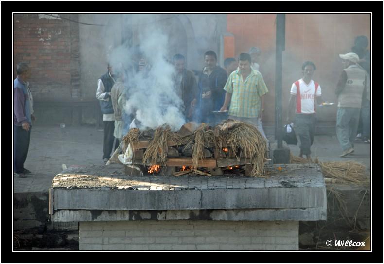 Népal - Novembre 2010 Yd0_9550