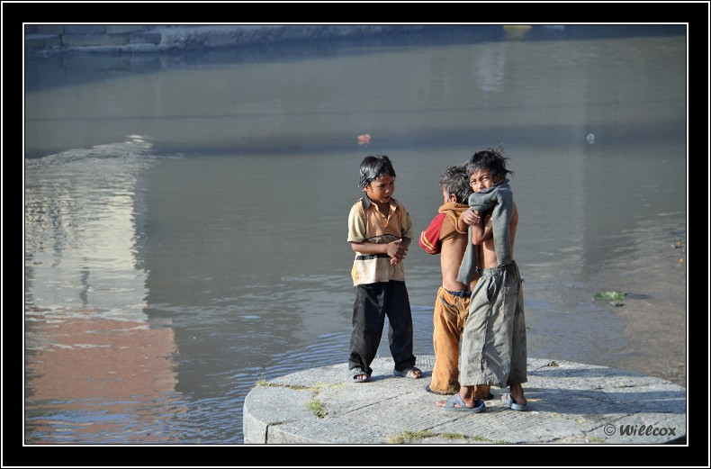 Népal - Novembre 2010 Yd0_9551