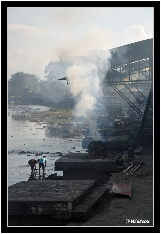 Népal - Novembre 2010 Yd0_9552