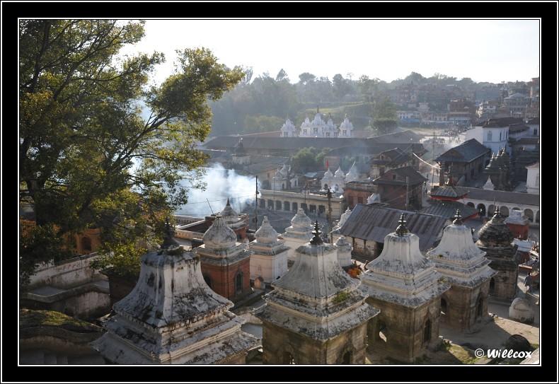 Népal - Novembre 2010 Yd0_9612