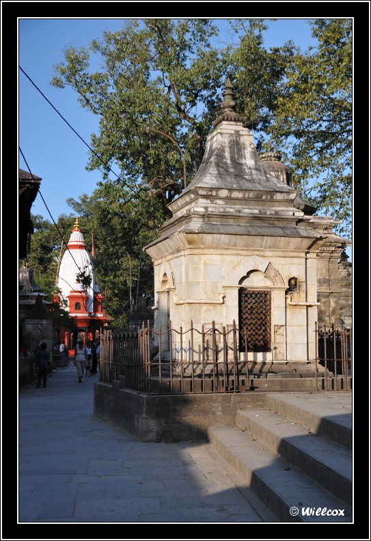 Népal - Novembre 2010 Yd0_9621