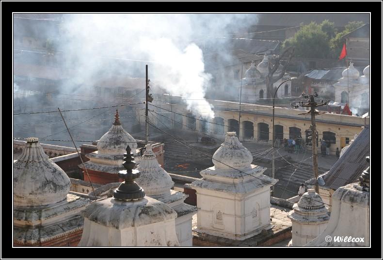 Népal - Novembre 2010 Yd0_9622