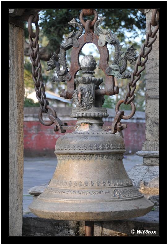 Népal - Novembre 2010 Yd0_9623