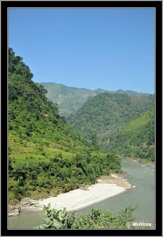 Népal - Novembre 2010 Yd0_9722
