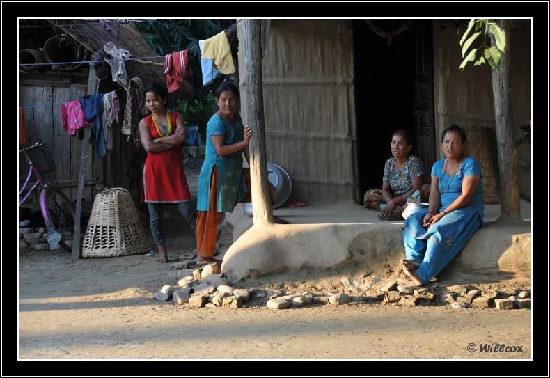 Népal - Novembre 2010 Yd0_9817