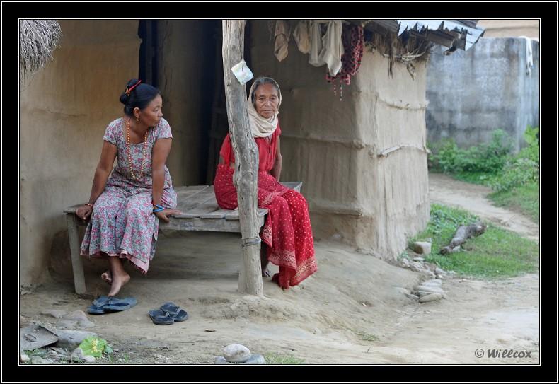 Népal - Novembre 2010 Yd0_9821