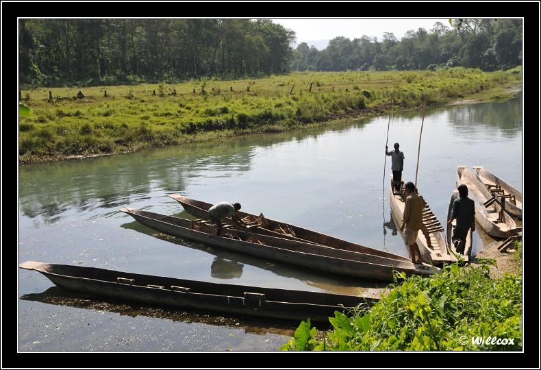 Népal - Novembre 2010 Yd1_0010