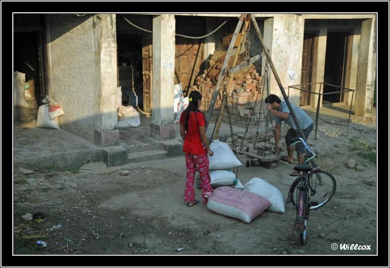 Népal - Novembre 2010 Yd1_0215