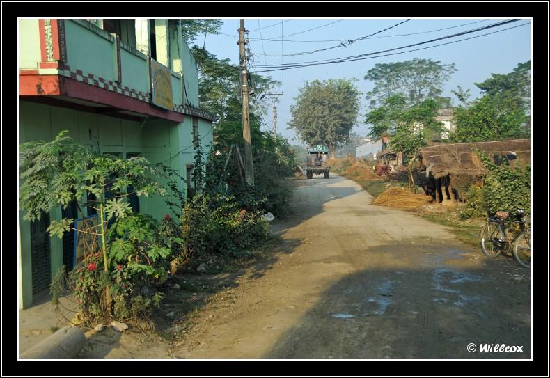 Népal - Novembre 2010 Yd1_0216