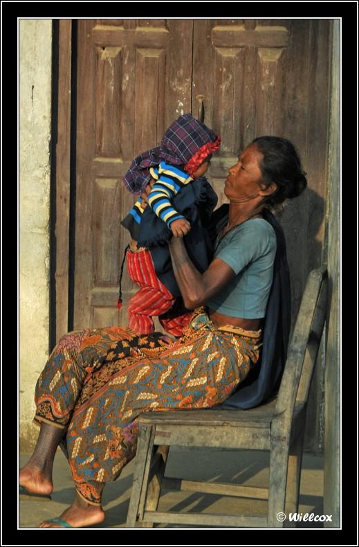 Népal - Novembre 2010 Yd1_0217