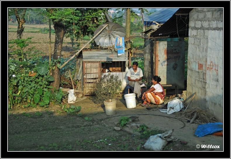 Népal - Novembre 2010 Yd1_0218