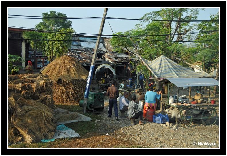 Népal - Novembre 2010 Yd1_0229