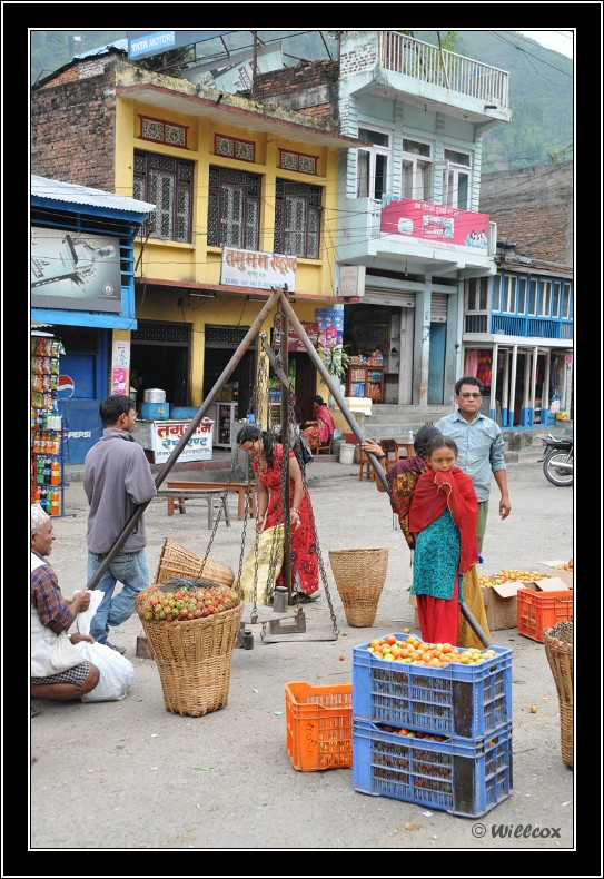 Népal - Novembre 2010 Yd1_0233