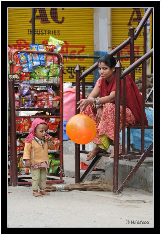 Népal - Novembre 2010 Yd1_0235