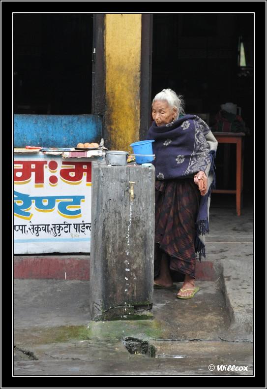 Népal - Novembre 2010 Yd1_0236