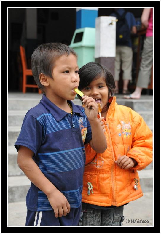 Népal - Novembre 2010 Yd1_0238
