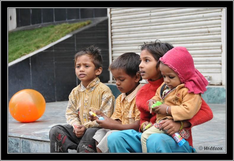 Népal - Novembre 2010 Yd1_0241