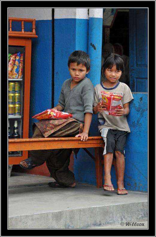 Népal - Novembre 2010 Yd1_0242