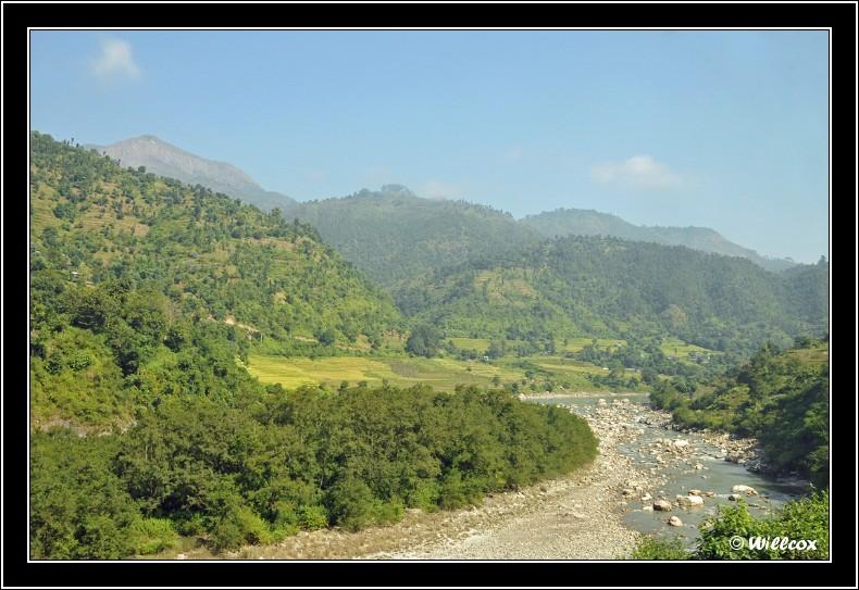 Népal - Novembre 2010 Yd1_0312