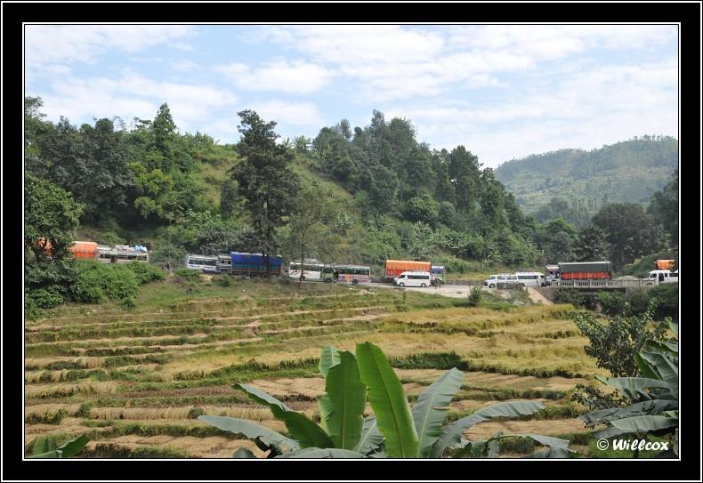 Népal - Novembre 2010 Yd1_0315