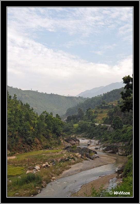 Népal - Novembre 2010 Yd1_0319