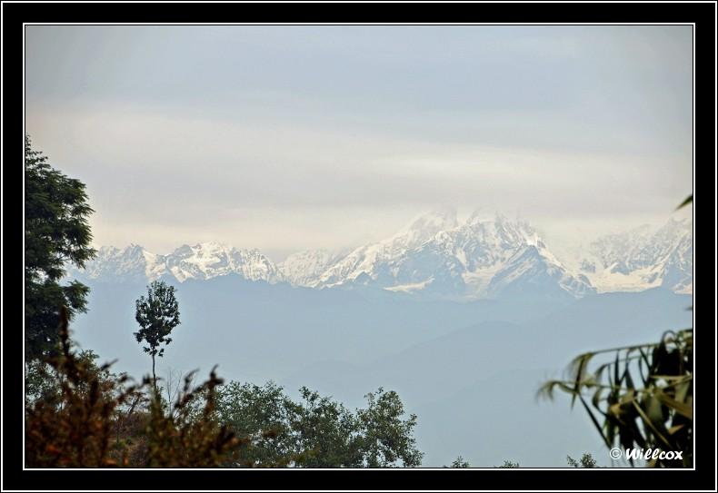 Népal - Novembre 2010 Yd1_0420