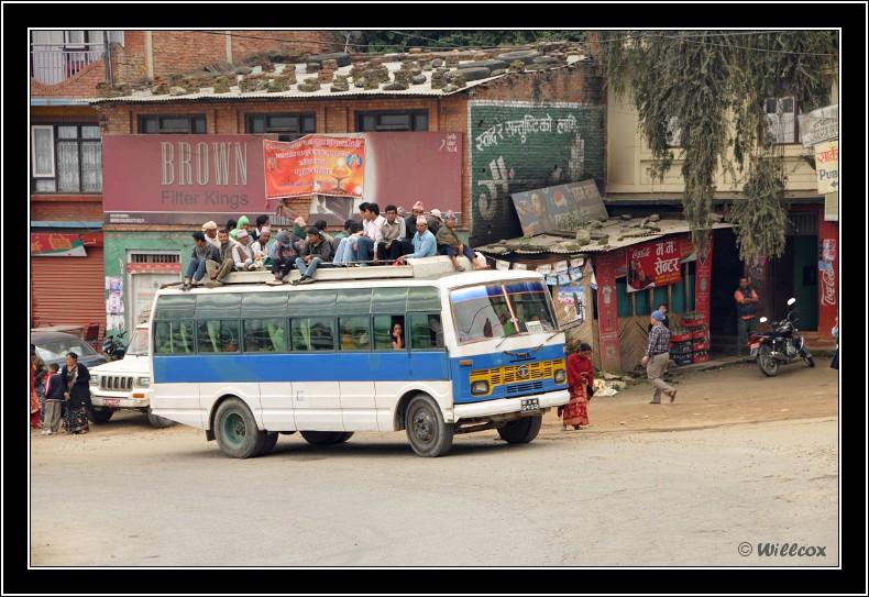 Népal - Novembre 2010 Yd1_0421