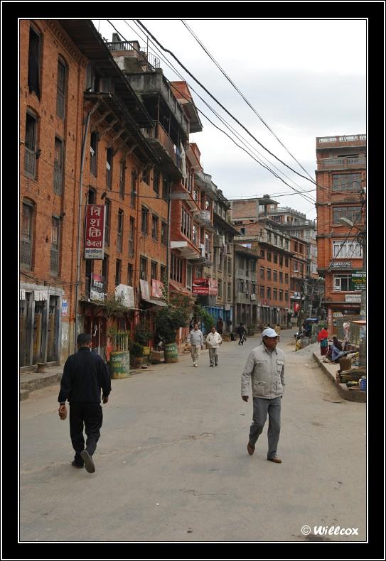 Népal - Novembre 2010 Yd1_0422