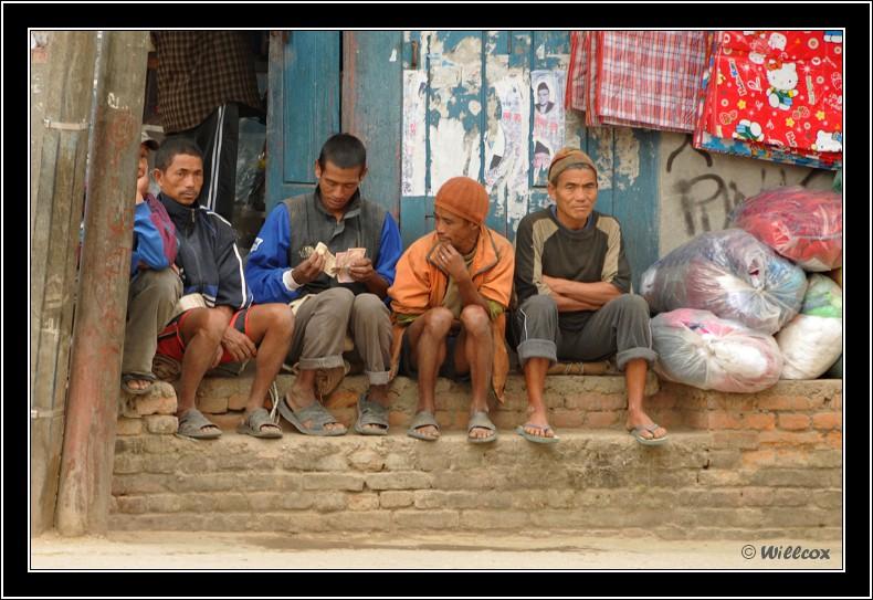 Népal - Novembre 2010 Yd1_0423