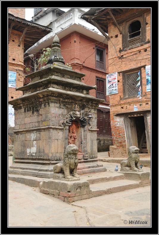 Népal - Novembre 2010 Yd1_0510