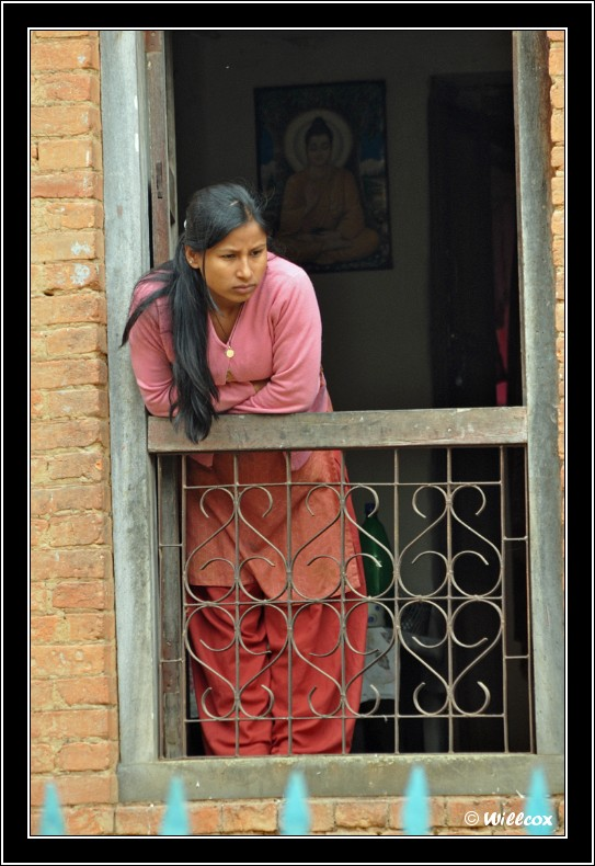 Népal - Novembre 2010 Yd1_0514