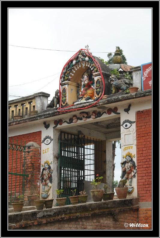 Népal - Novembre 2010 Yd1_0519