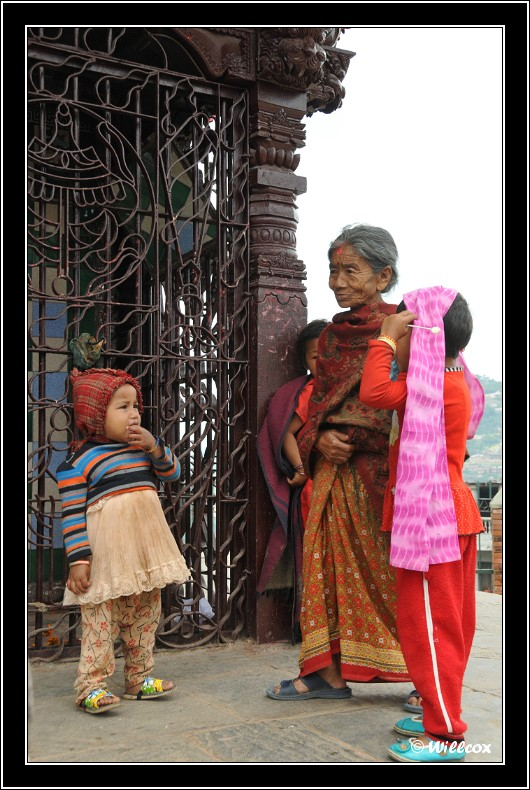 Népal - Novembre 2010 Yd1_0520