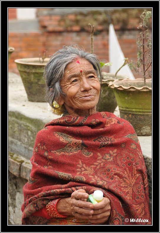 Népal - Novembre 2010 Yd1_0523