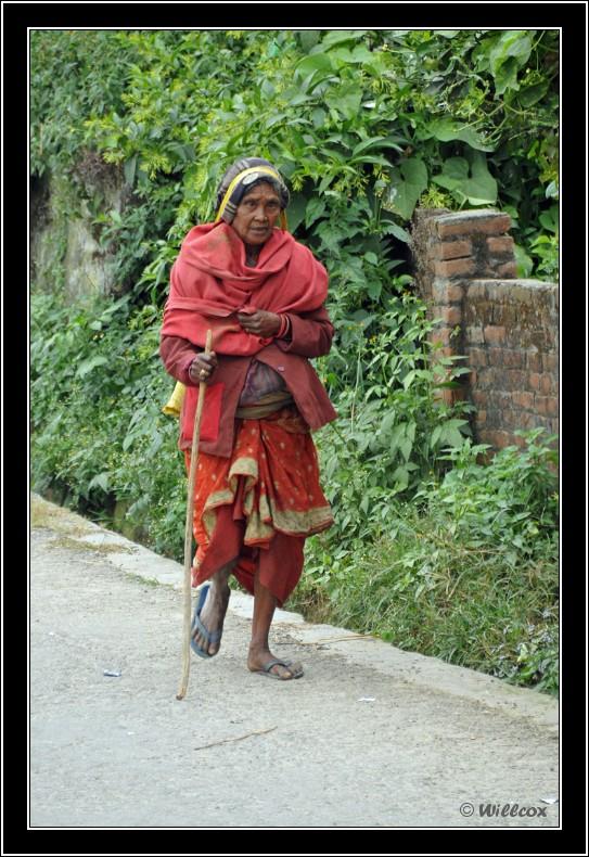 Népal - Novembre 2010 Yd1_0526