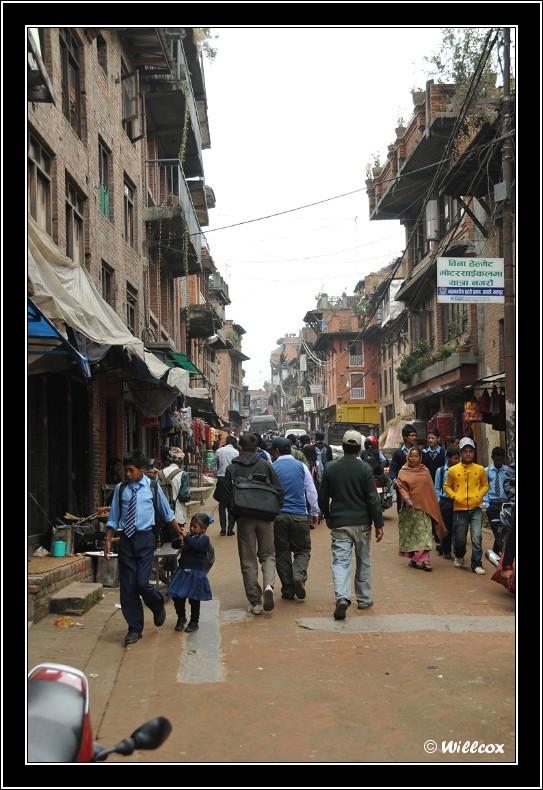 Népal - Novembre 2010 Yd1_0533