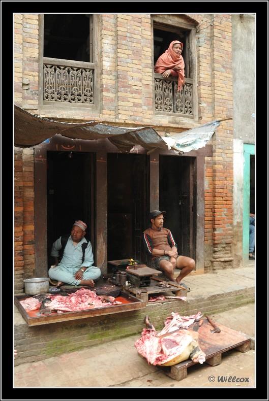 Népal - Novembre 2010 Yd1_0534