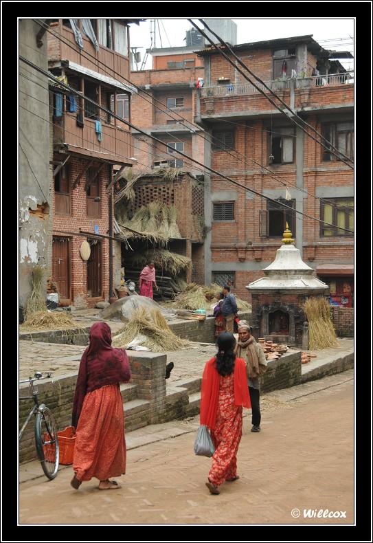 Népal - Novembre 2010 Yd1_0535