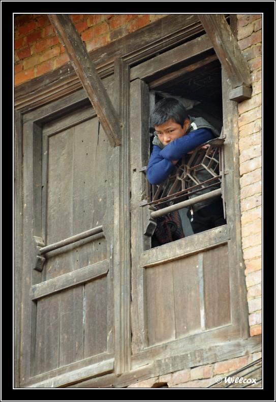 Népal - Novembre 2010 Yd1_0536