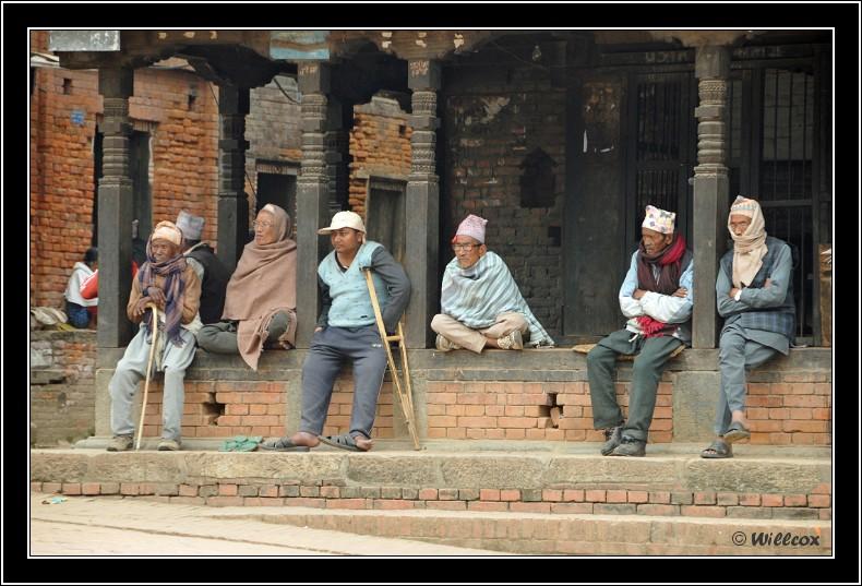 Népal - Novembre 2010 Yd1_0537