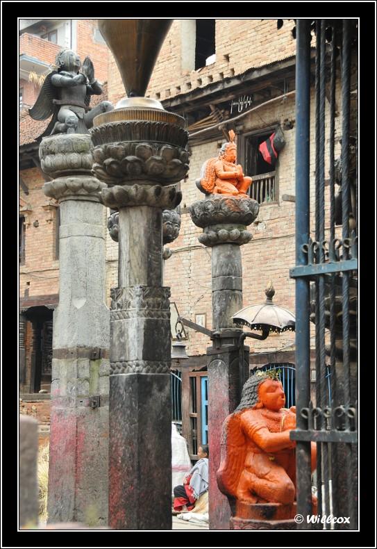 Népal - Novembre 2010 Yd1_0611