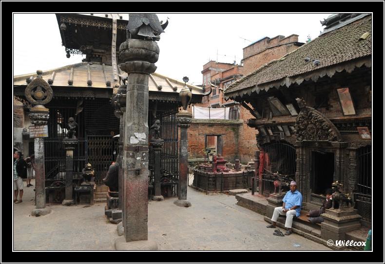 Népal - Novembre 2010 Yd1_0613