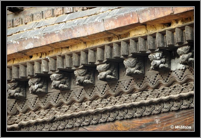 Népal - Novembre 2010 Yd1_0618
